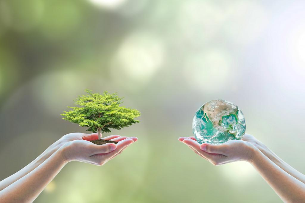 holding tree and miniature globe