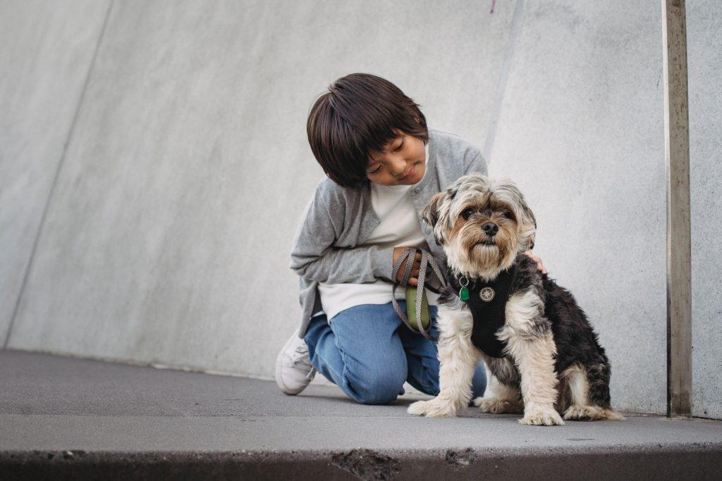 child walking a dog