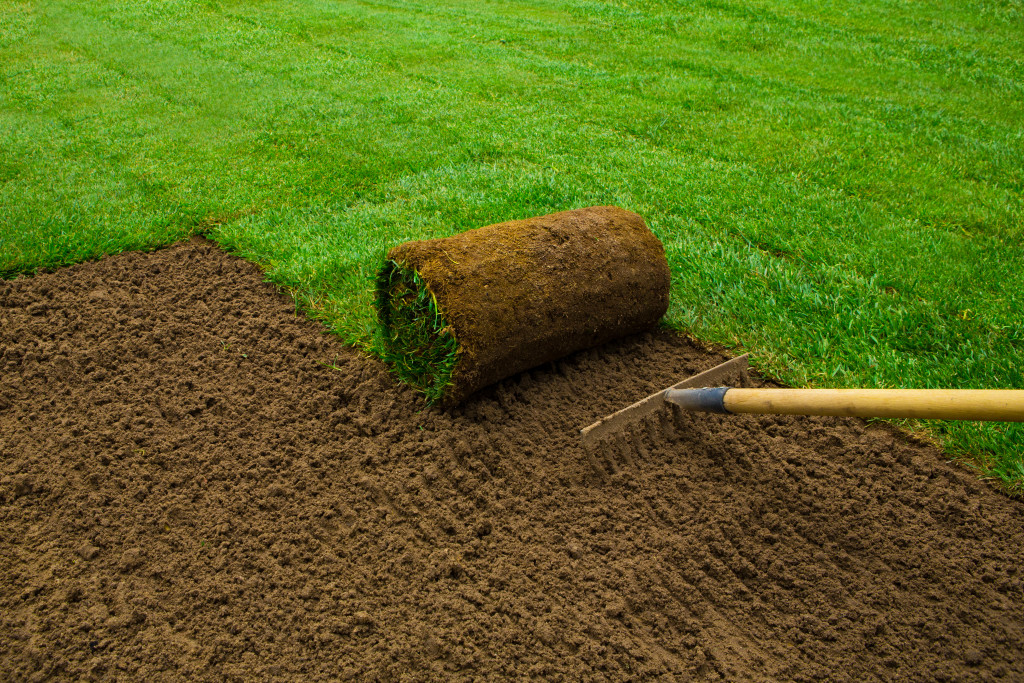 installing bermuda grass