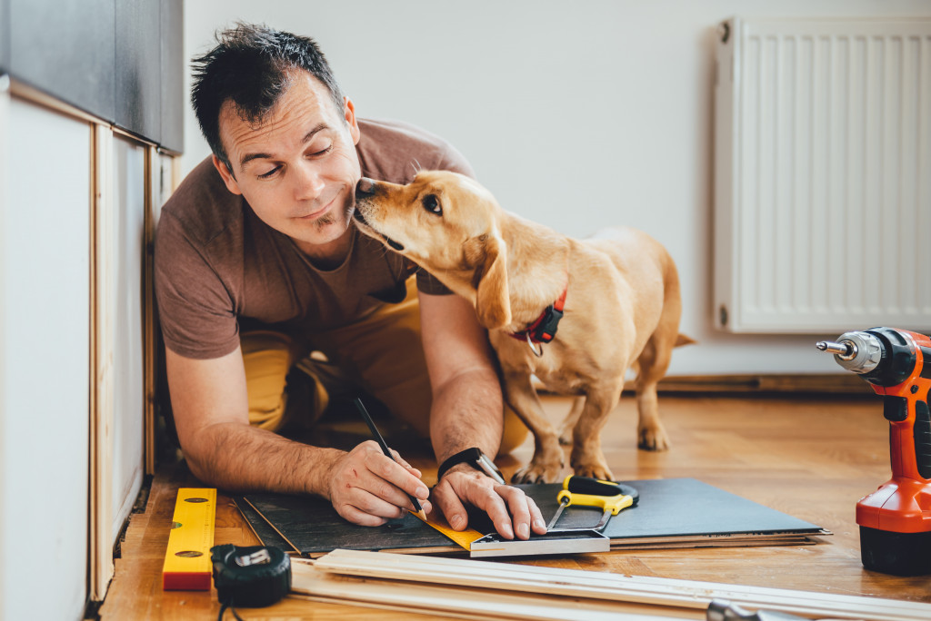 renovating home with pet
